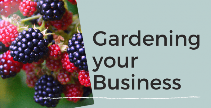 image of blackberry bush and text gardening your business